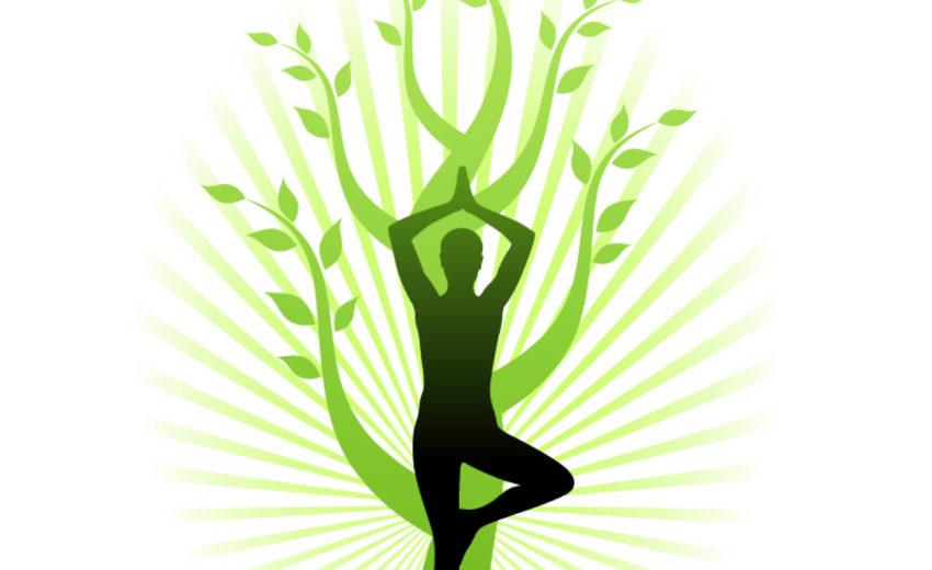 1e jaar opleiding Yoga docent